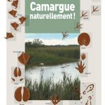Camargue Naturellement